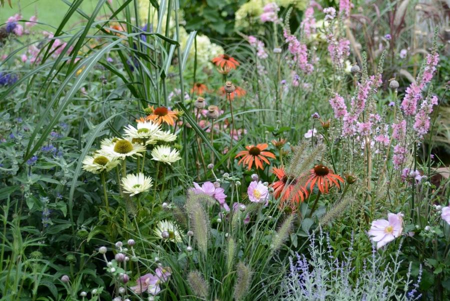 trädgårdene