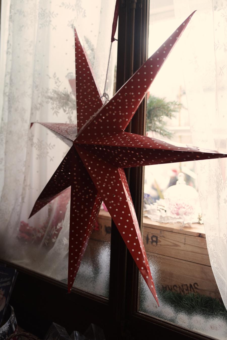 julstjarna