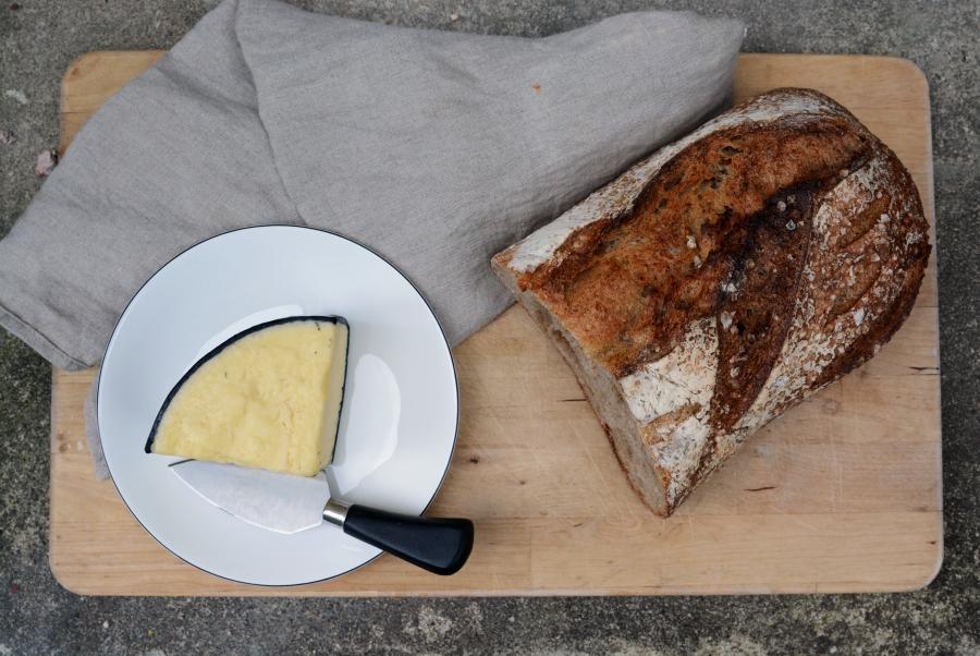 Bröd ost och färgval