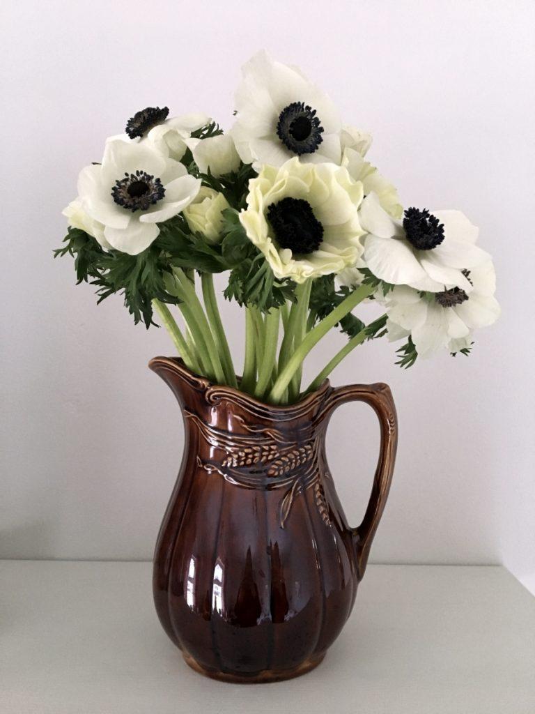 Loppis och anemoner